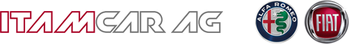 ITAMCAR AG Logo